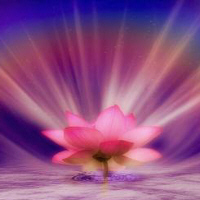 Timeless Practices for Living in Light - Shanta Gabriel